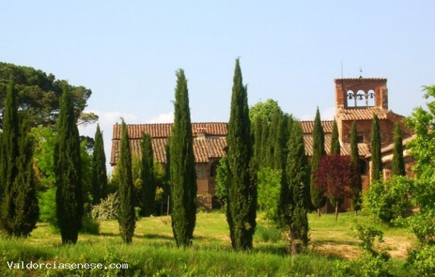 Castles and villas in the territory of Montalcino